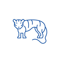 tiger line icon concept tiger flat symbol vector image