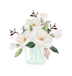 Watercolor white magnolia blooming flower branch vector