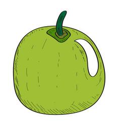 Isolated apple vector