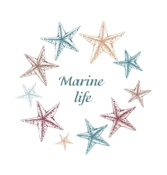 Decorative sea card with starfishes on white vector image vector image