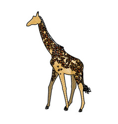 Giraffe animal herbivore african wildlife vector