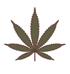 marijuana or cannabis leaf medical cannabis vector image