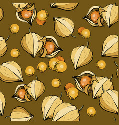ripe physalis seamless pattern with berries vector image