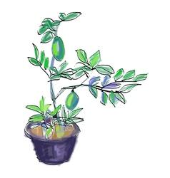 Sketch of lemon tree vector image