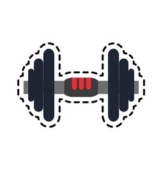 weights icon image vector image