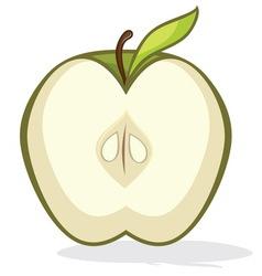 Green apple half vector image