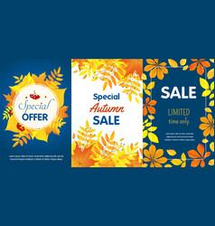 autumn sale banner set flat style vector image