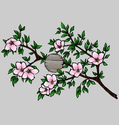 Branch with Cherry Blossoms vector