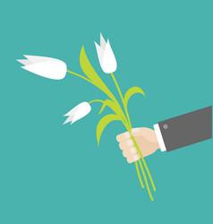businessman hand holding bouquet white tulip vector image