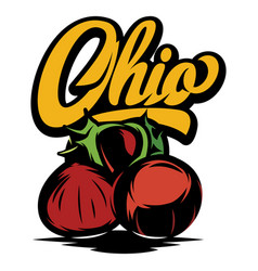 ohio calligraphic inscription with chestnut vector image