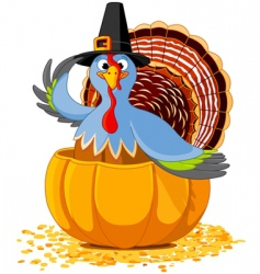 thanksgiving turkey in the pumpkin vector image vector image