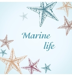 Decorative frame for text with starfishes on blue vector image