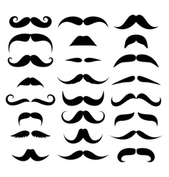 Huge set mustache vector