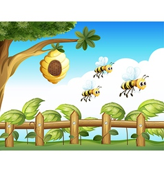 The three bees vector