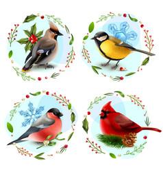 winter birds design concept vector image