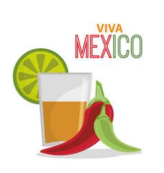viva mexico greeting tequila celebration vector image