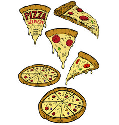 set of pizza design elements for poster menu vector image vector image