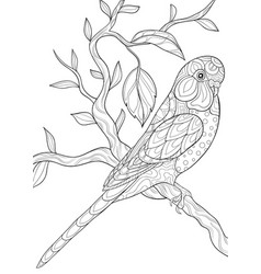 adult coloring bookpage a cute parrot on the vector image