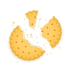 Delicious round biscuit vector