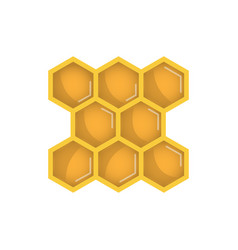 honeycomb icon vector image