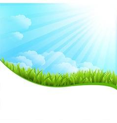 Of summer grass vector