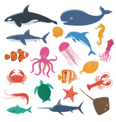 Set sea animals vector