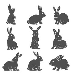 set of rabbit icons isolated on white background vector image