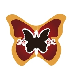 butterfly framed vector image vector image