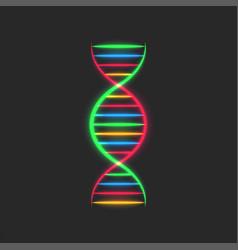 Dna spiral logo deoxyribonucleic acid genetic vector