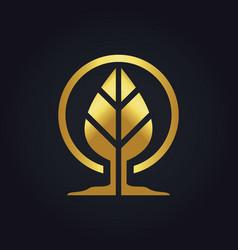 Gold leaf botany logo vector