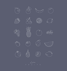 pen line fruits icons grey vector image