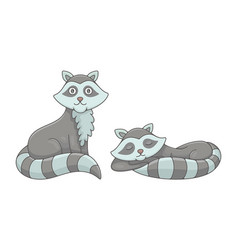 set raccoons vector image