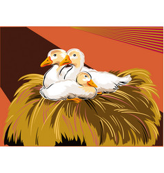 Young geese in a nest vector