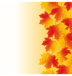 Autumn background with yellow maple leaf vector image
