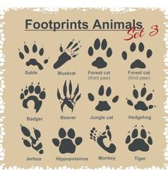 Footprints Animals - set vector image vector image