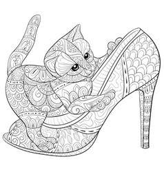 adult coloring bookpage a cute cat on the shoe vector image