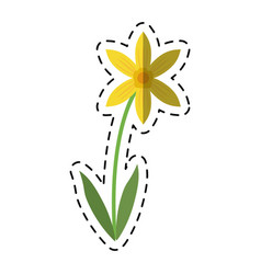 Cartoon lily petal natural style vector