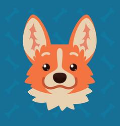 Corgi dog emotional head of vector