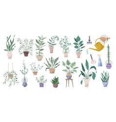 green plants in pots with gardening tools big set vector image