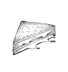 hand drawn of grilled cheese sandwich on white bac vector image