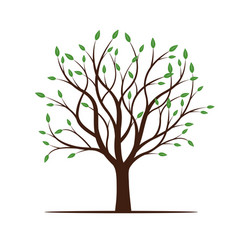 Spring tree with green leafs vector