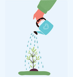 watering plant with watering can vector image