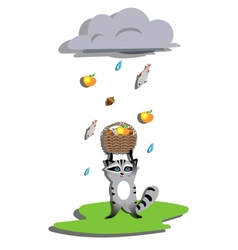 Rain for racoon vector image vector image