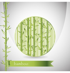 Background with bamboo in circle and green ribbon vector