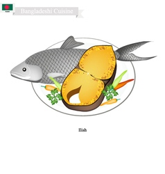 Bangladeshi Salted and Fried Ilish Fish vector
