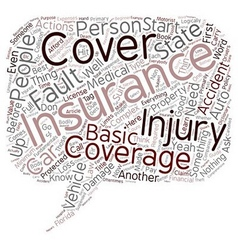 Beginner s Guide To Auto Insurance text background vector image