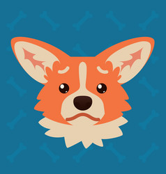Corgi dog emotional head of vector