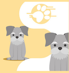 Dog animal domestic vector