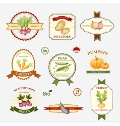 Vegetables set of label design vector