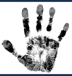 print palm vector image